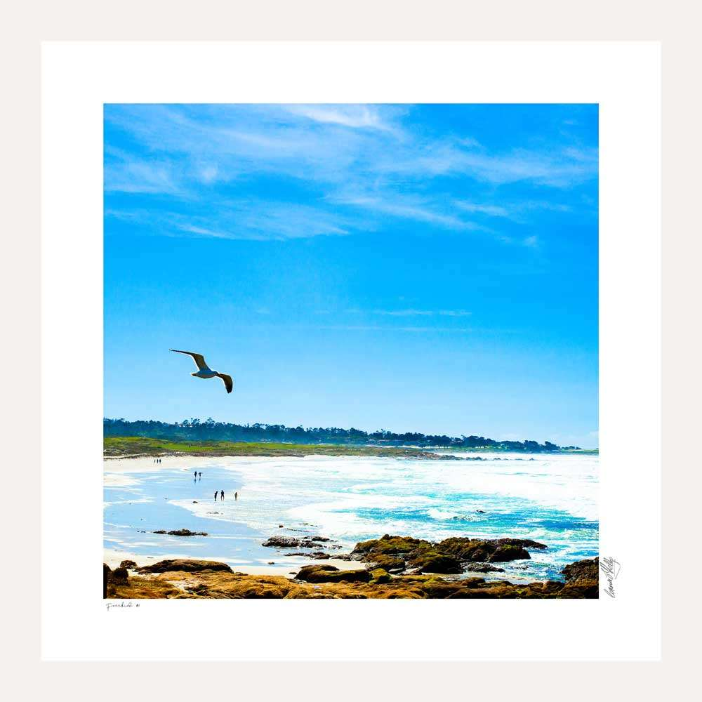 Freebird coastal scene along the Pacific Coast Highway